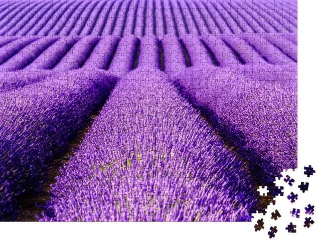 """Puzzle 1000 Teile """"Lavendelblüten auf der Hochebene von Valensole, Provence, Frankreich"""""""