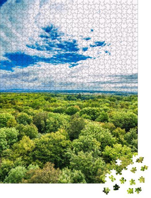"""Puzzle 1000 Teile """"Alte Buchenwälder des Nationalparks Hainich, Deutschland"""""""
