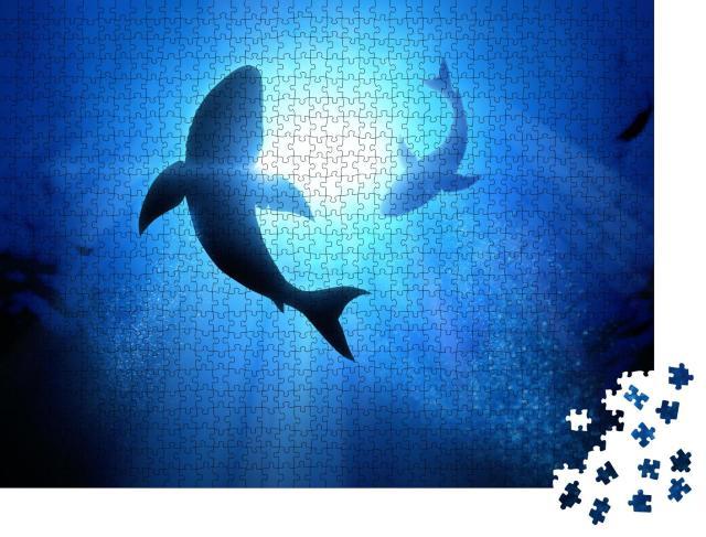 """Puzzle 1000 Teile """"Zwei kreisende weiße Haie"""""""