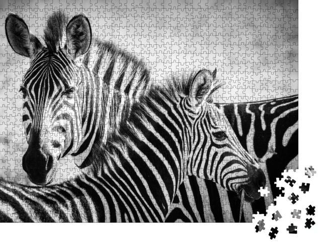 """Puzzle 1000 Teile """"Zebramutter und ihr Junges im Serengeti-Nationalpark"""""""