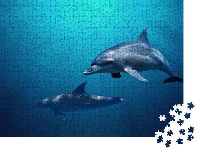 """Puzzle 1000 Teile """"Zwei Delfine schwimmen durch blaues Wasser"""""""