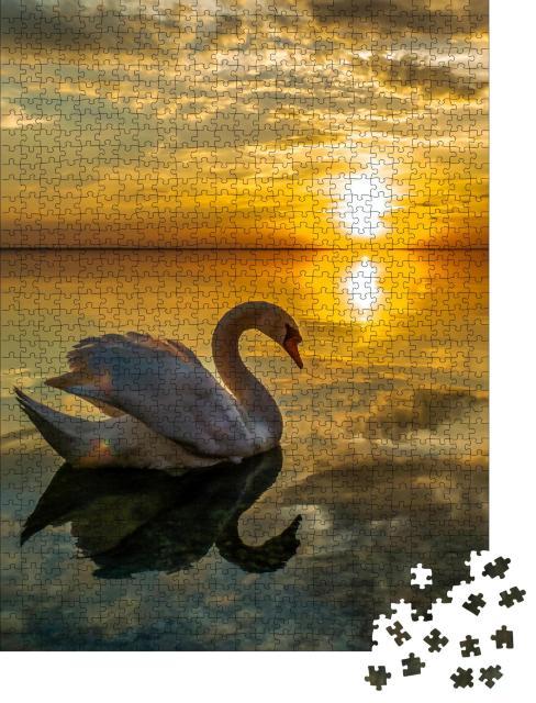 """Puzzle 1000 Teile """"Weißer Schwan in ruhigem Wasser beim Sonnenuntergang"""""""