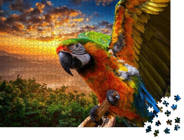 """Puzzle 1000 Teile """"Prächtige Farben der Natur: Ara im Sonnenuntergang"""""""