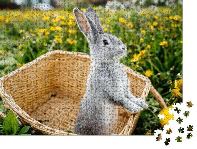 """Puzzle 1000 Teile """"Graues Kaninchen im Korb auf einer Löwenzahnwiese"""""""