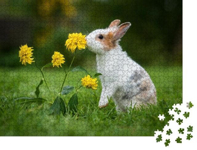 """Puzzle 1000 Teile """"Kleines neugieriges Kaninchen"""""""
