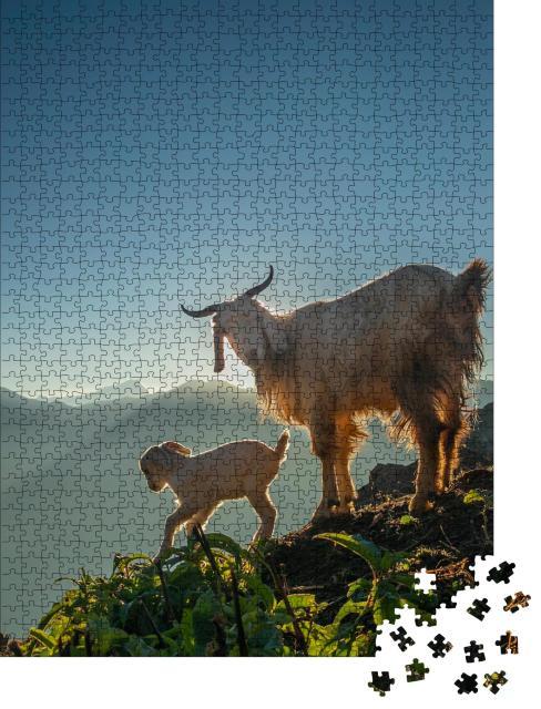 """Puzzle 1000 Teile """"Eine Ziege und ihr Zicklein in den Bergen bei morgendlichem Sonnenlicht"""""""