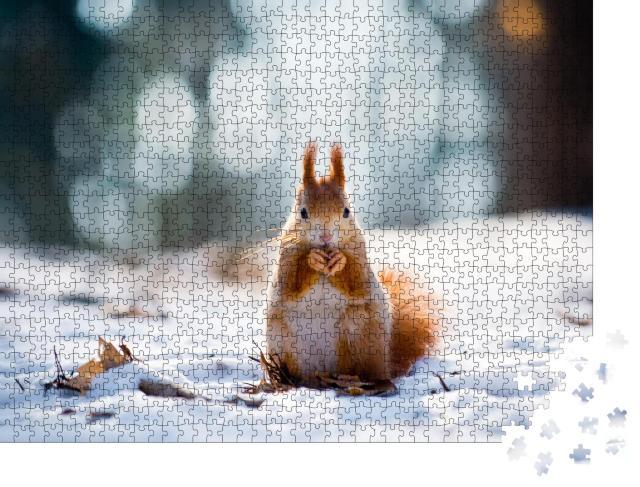 """Puzzle 1000 Teile """"Ein Eichhörnchen im Winterwald"""""""