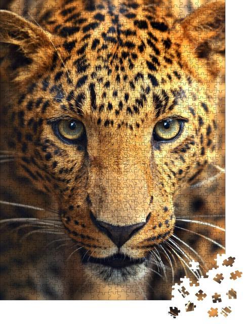 """Puzzle 1000 Teile """"Auge in Auge mit einem Leoparden"""""""