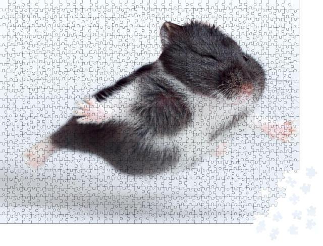 """Puzzle 1000 Teile """"Lustiger fliegender Hamster"""""""