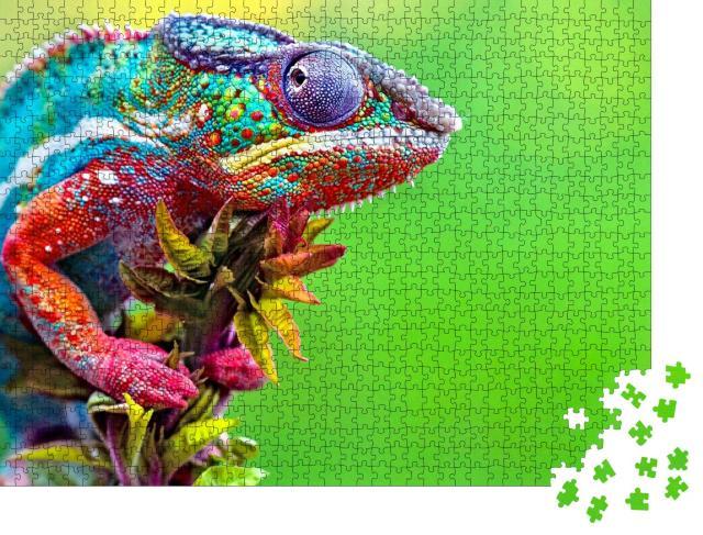 """Puzzle 1000 Teile """"Wildes Chamäleon: Reptil mit schönen Farben"""""""