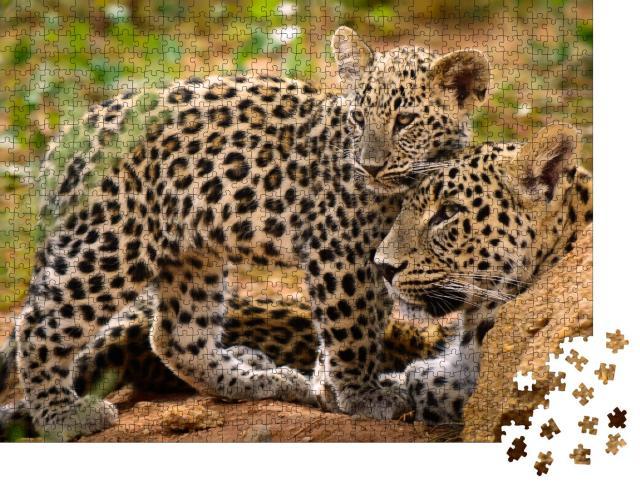 """Puzzle 1000 Teile """"Leopardenmama und ihr Junges"""""""