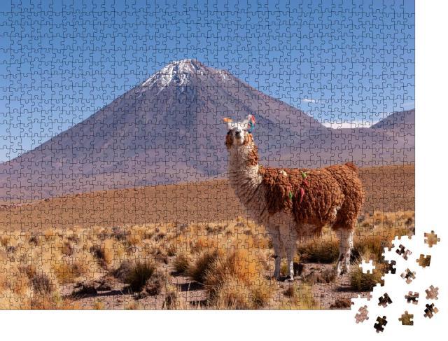 """Puzzle 1000 Teile """"Lama, hinter ihm der Vulkan Licancabur an der Grenze zwischen Bolivien und Chile"""""""