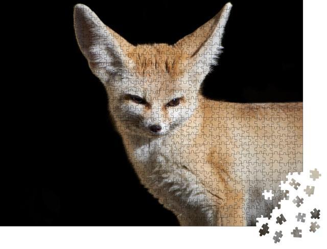 "Puzzle 1000 Teile ""Nahaufnahme eines Fennec-Fuchses"""