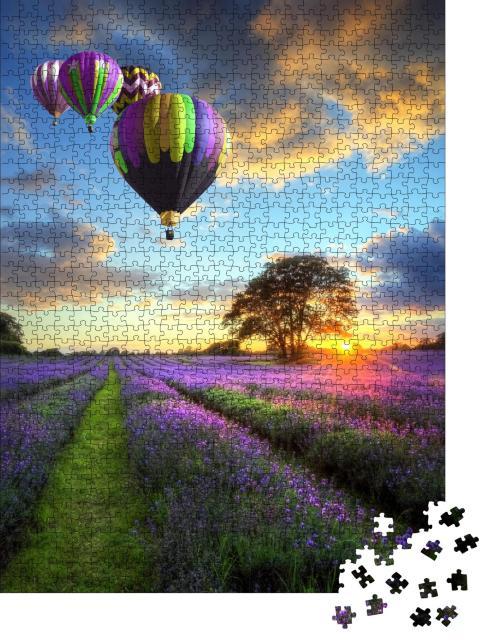"""Puzzle 1000 Teile """"Heißluftballons über einem Lavendelfeld im Abendlicht"""""""