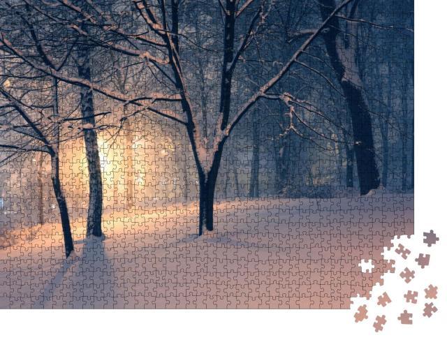 """Puzzle 1000 Teile """"Winterabend im Park und Licht im Dunst hinter den Bäumen"""""""