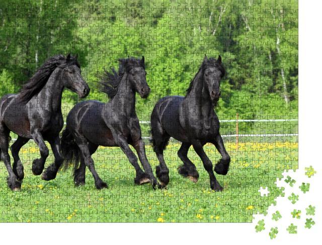 """Puzzle 1000 Teile """"Friesische Pferde galoppieren auf der Weide"""""""