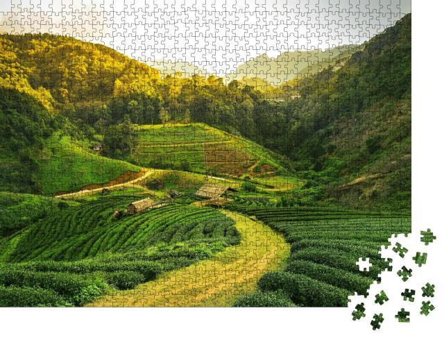 """Puzzle 1000 Teile """"Blick auf eine Teeplantage bei Sonnenaufgang"""""""
