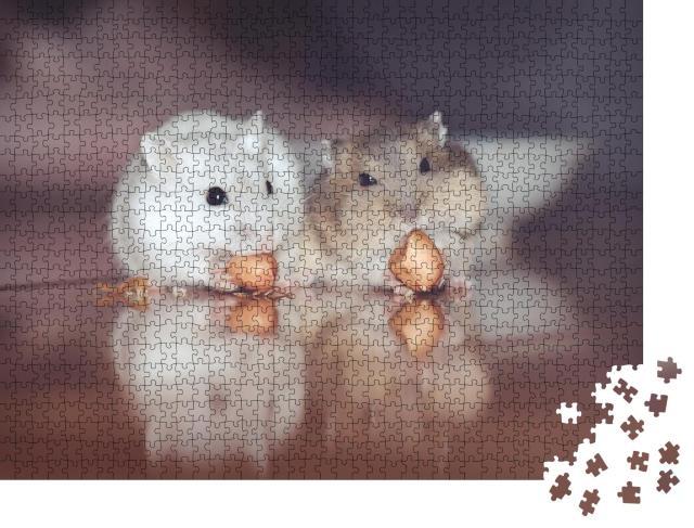 """Puzzle 1000 Teile """"Zwei süße russische Hamster knabbern Nüsse"""""""