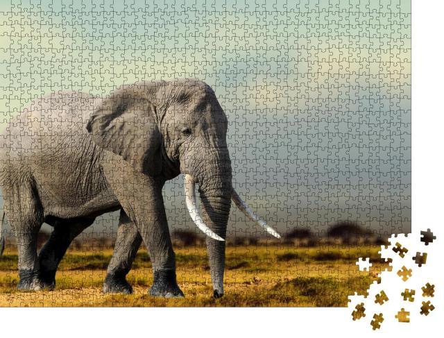 """Puzzle 1000 Teile """"Afrikanischer Elefant, Masai Mara National Park, Kenia"""""""