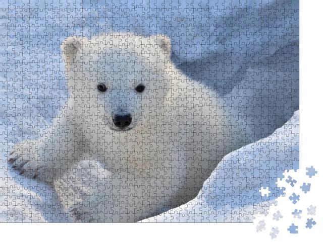 """Puzzle 1000 Teile """"Porträt eines weißen Bären"""""""