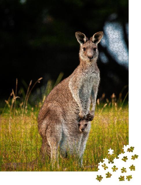 "Puzzle 1000 Teile ""Känguru-Mutter neugierigem Jungtier im Beutel"""