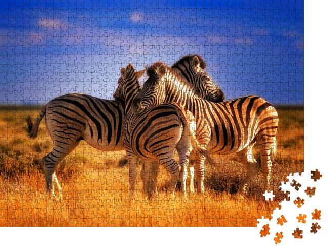 """Puzzle 1000 Teile """"Drei Zebras machen eine Pause"""""""