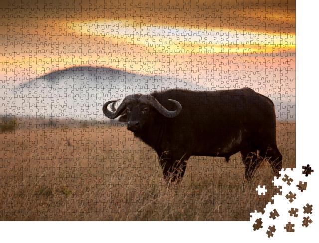 """Puzzle 1000 Teile """"Kaffernbüffel inmmiten der Wildnis von Afrika"""""""