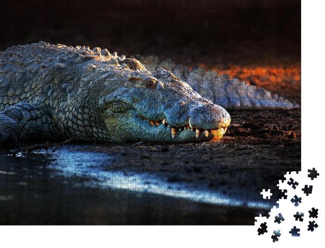 """Puzzle 1000 Teile """"Nilkrokodil im Krüger-Nationalpark, Südafrika"""""""