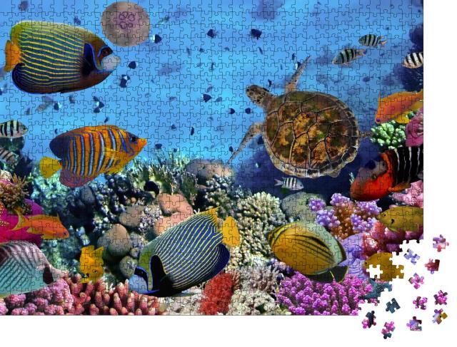 """Puzzle 1000 Teile """"Buntes Korallenriff mit Fischen und Meeresschildkröten"""""""