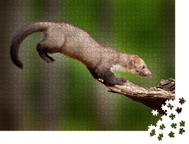 """Puzzle 1000 Teile """"Genaue Landung: Springender Baummarder, auch bekannt als Steinmarder"""""""