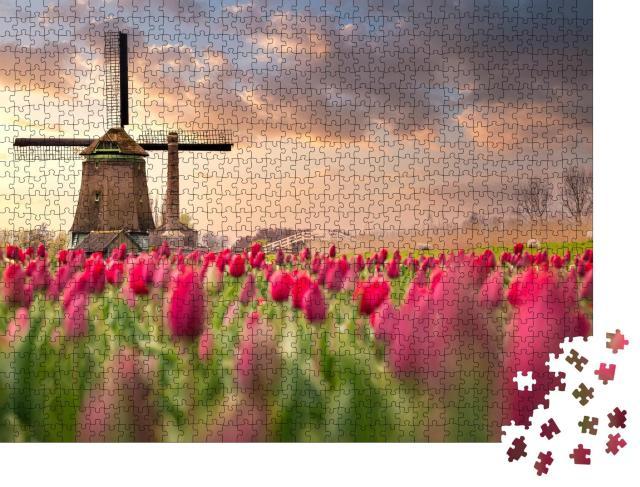 """Puzzle 1000 Teile """"Tulpenfelder und Windmühlen in den Niederlanden"""""""