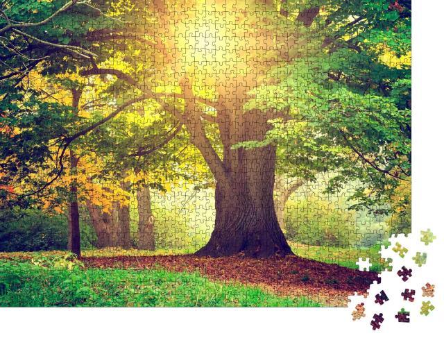 """Puzzle 1000 Teile """"Abend im Park"""""""