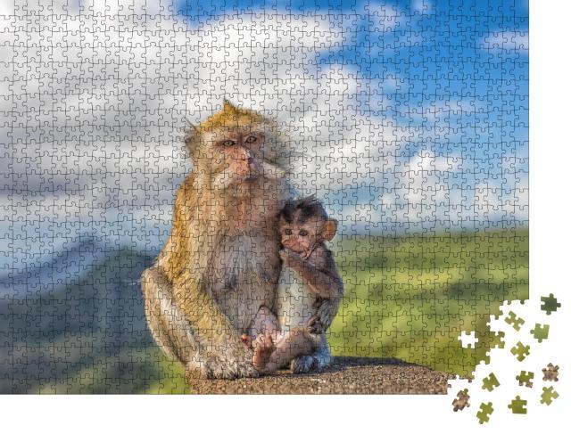 """Puzzle 1000 Teile """"Niedliches Makakenäffchen mit Affenmutter, Mauritius"""""""
