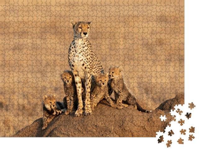 """Puzzle 1000 Teile """"Gepardenweibchen mit vier Jungtieren"""""""