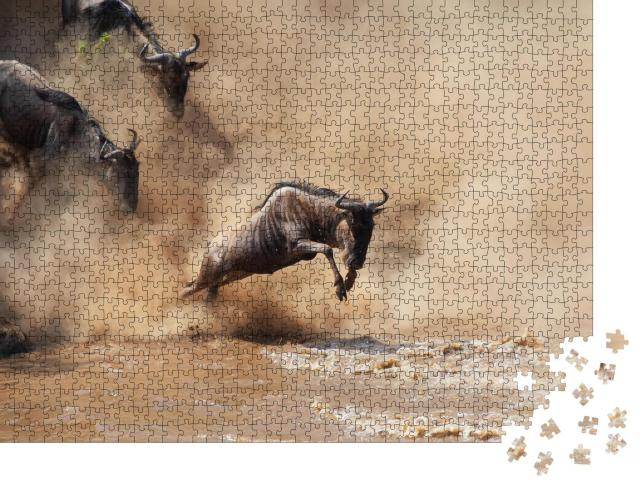 """Puzzle 1000 Teile """"Wilde Gnus beim Durchqueren eines Flusses"""""""