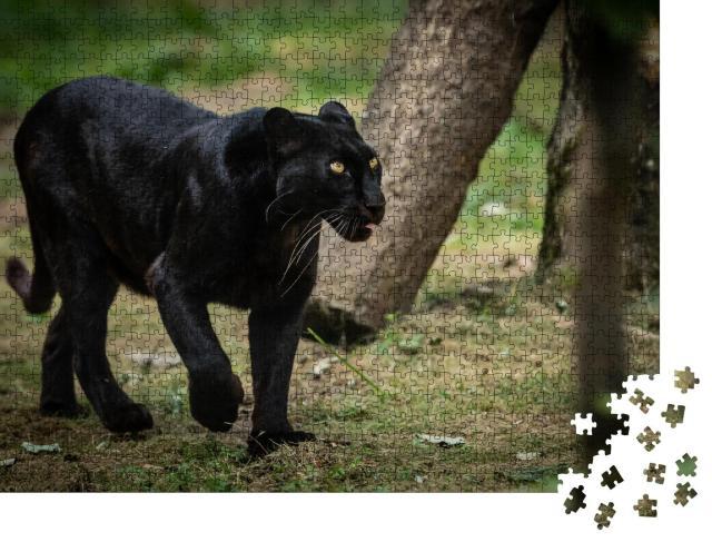 """Puzzle 1000 Teile """"Waldbild mit einem Panther"""""""