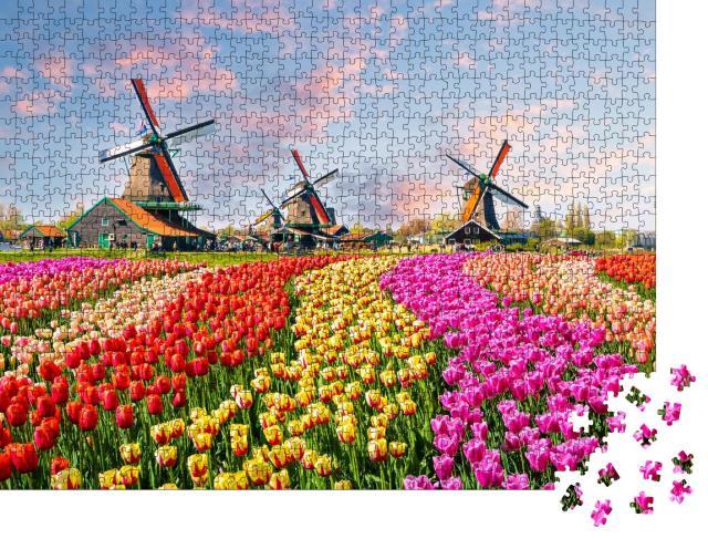 """Puzzle 1000 Teile """"Idyllische Windmühlen und Tulplen, Niederlande"""""""
