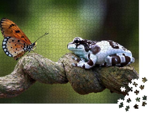 """Puzzle 1000 Teile """"Amazonas-Milchfrosch, Auge in Auge mit einem Schmetterling"""""""