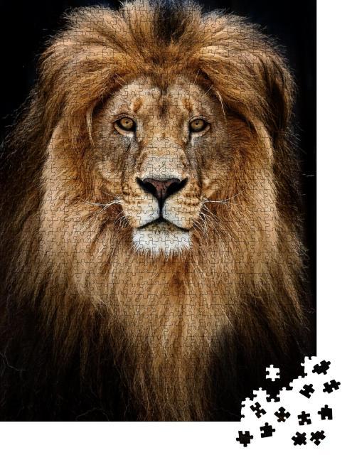 """Puzzle 1000 Teile """"Porträt eines beeindruckenden Löwen"""""""