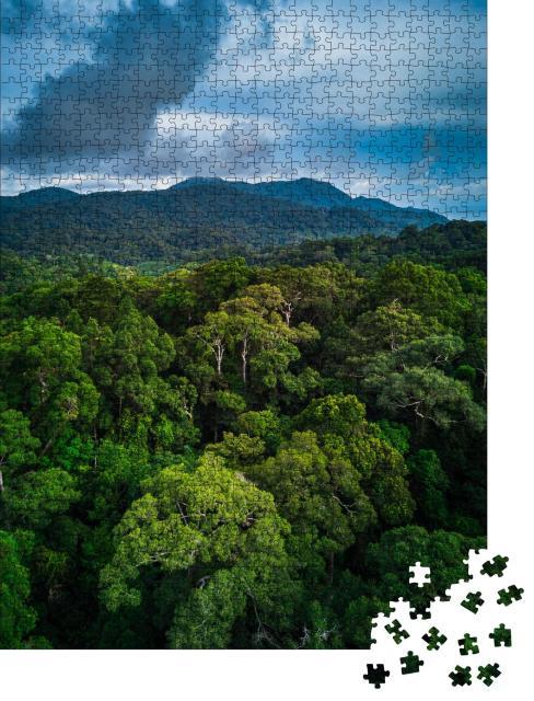 """Puzzle 1000 Teile """"Wunderschöner tropischer Regenwald mit grünen Hügeln"""""""