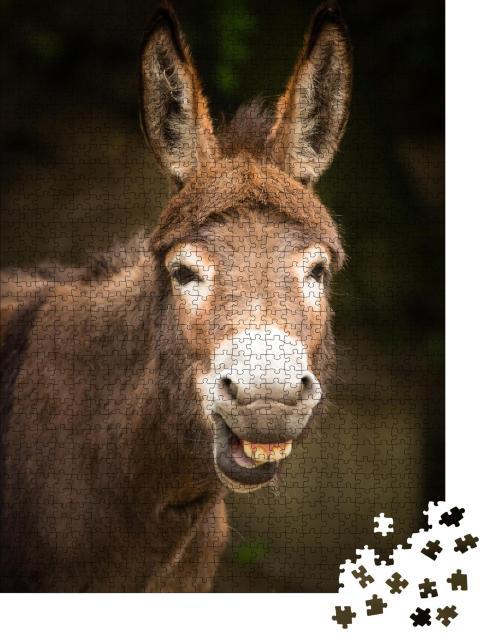 """Puzzle 1000 Teile """"Lustig: lächelnder Esel"""""""