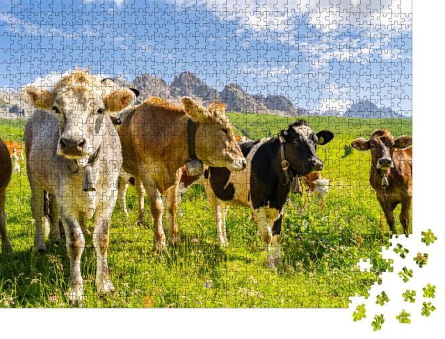 """Puzzle 1000 Teile """"Idyllische Landschaft mit Kuhherde in den Alpen"""""""