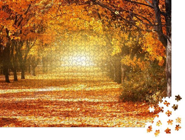 """Puzzle 1000 Teile """"Allee aus goldenen Herbstbäumen"""""""