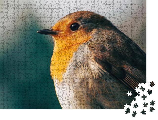"""Puzzle 1000 Teile """"Porträt eines Rotkehlchens im Abendlicht"""""""
