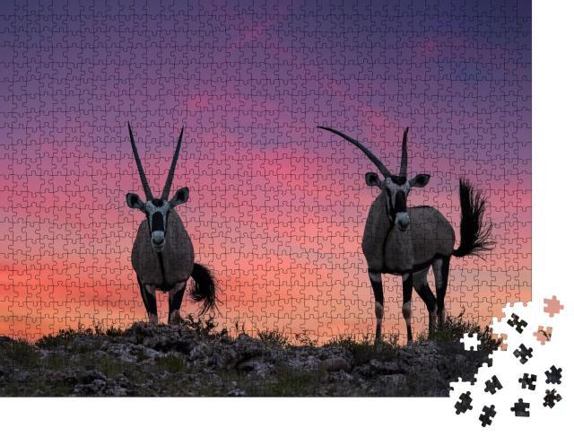 """Puzzle 1000 Teile """"Zwei große Antilopen mit spektakulären Hörner, Kalahari"""""""