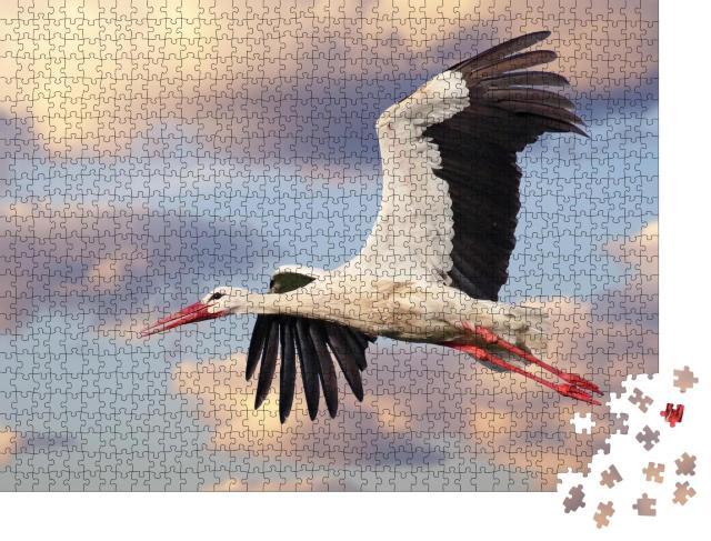 """Puzzle 1000 Teile """"Schöner Weißstorch im Flug mit bewölktem Himmel im Hintergrund, Ciconia ciconia"""""""