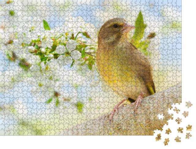 """Puzzle 1000 Teile """"Grünfink im blühenden Obstbaum"""""""