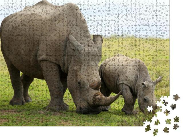 """Puzzle 1000 Teile """"Nahaufnahme eines weiblichen Nashorns mit Kalb, Südafrika"""""""