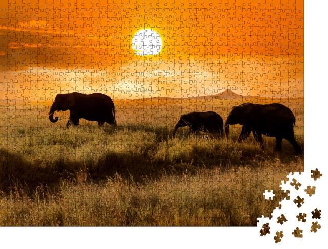 """Puzzle 1000 Teile """"Elefantenfamilie bei Sonnenuntergang, Nationalpark von Afrika"""""""