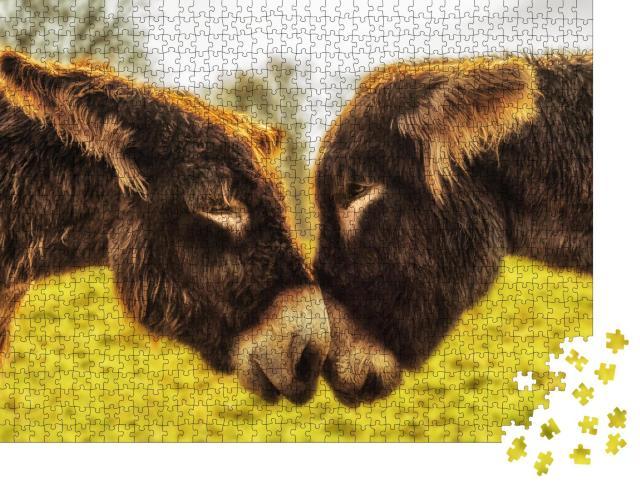"""Puzzle 1000 Teile """"Eselspaar schaut sich in die Augen"""""""